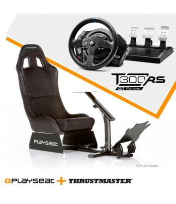 Playseat Alcantara + T300...